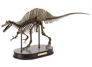 Spinosaurus Skeleton Model