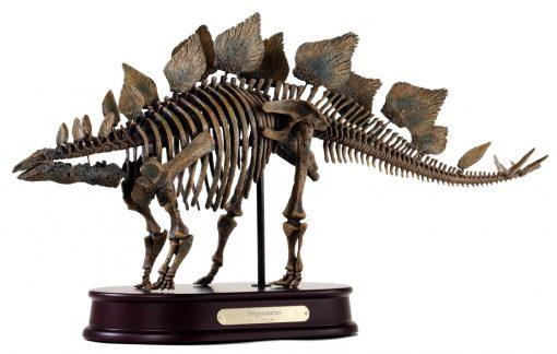 Stegosaurus Skeleton Model
