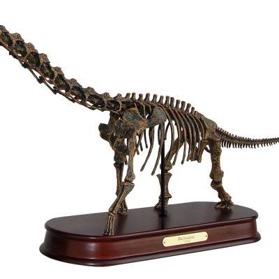 Brachiosaurus Skeleton Model