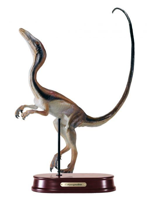 Compsognathus Finished Model
