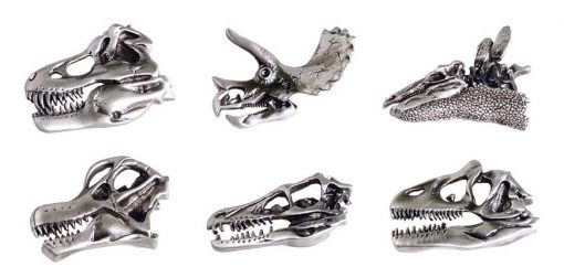 Dinosaur Skull Pewter Magnet Set