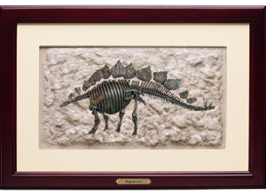Stegosaurus Framed Art